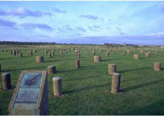 Woodhenge today